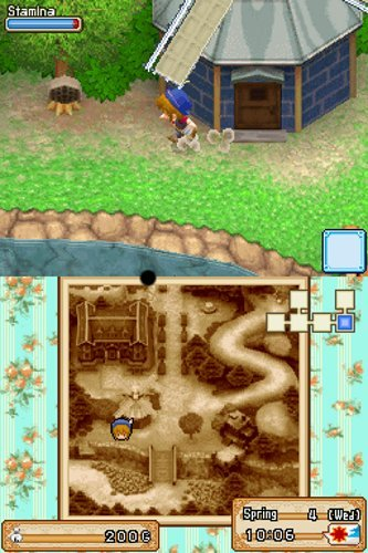 Harvest Moon DS: Der Großbasar, Screenshot #5