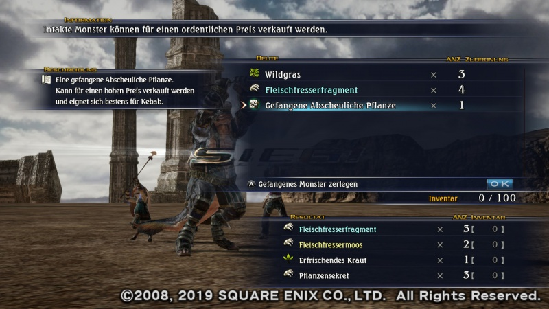 The Last Remnant Remastered, Screenshot #6