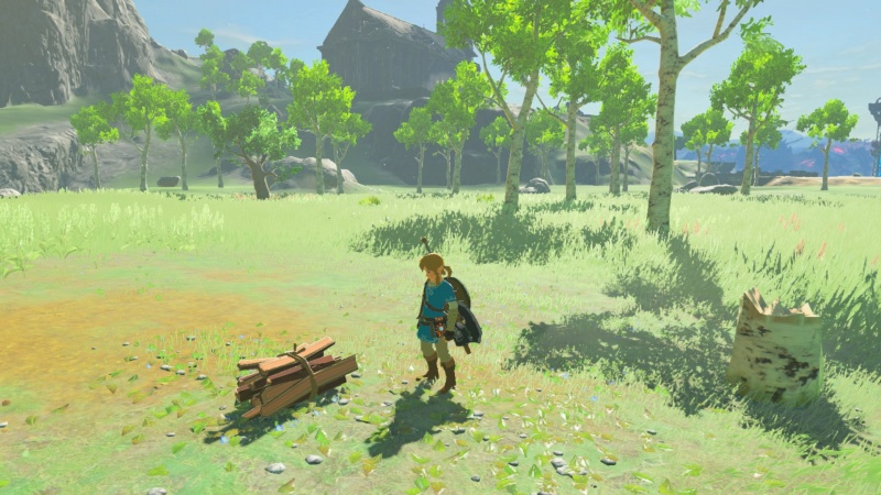 The Legend of Zelda: Breath of the Wild, Screenshot #6
